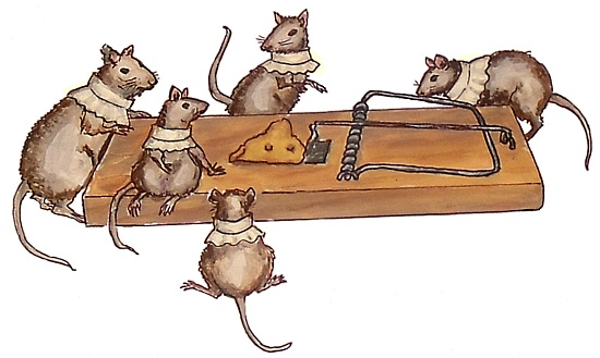 the mouse choristers inspect the trap